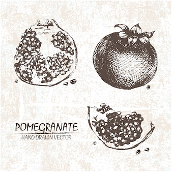 Hand drawn pomegranate design
