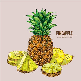 Hand drawn realistic pineapple