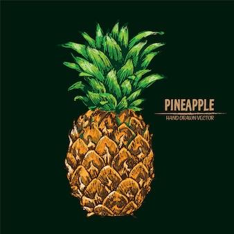 Hand drawn realistic pineapple