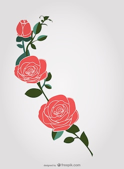 Hand-drawn roses