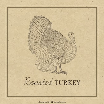 Hand drawn thanksgiving turkey in retro style