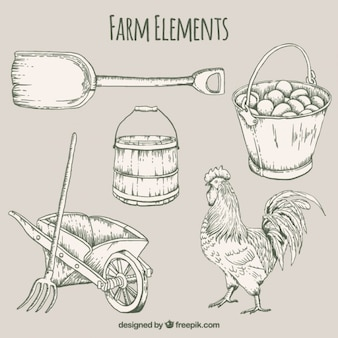Hand drawn useful farm elements and rooster