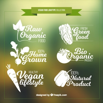 Hand drawn vegan food logos