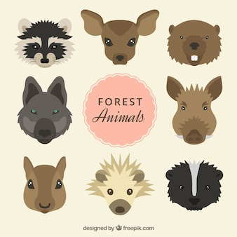 Hand drawn wild animals heads