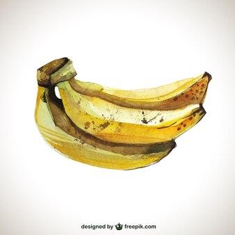 Hand painted bananas