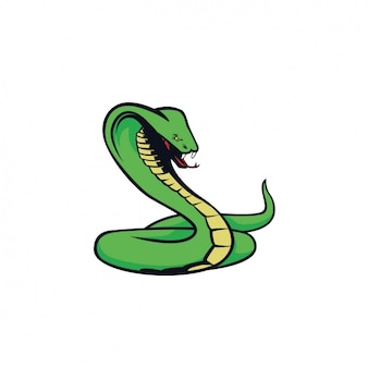 Hand painted cobra design