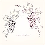 Hand painted grapes
