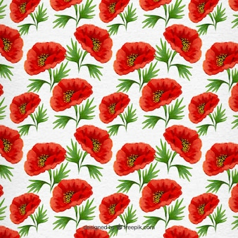 Hand painted poppy pattern
