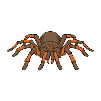 Hand painted spider design