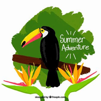 Hand painted toucan with wild flowers background