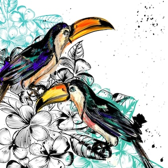 Hand painted toucans background