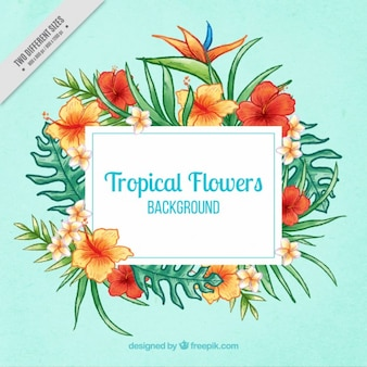 Hand painted tropical flowers decoration background
