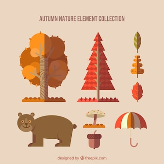 Happy bear with autumn items in flat style
