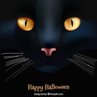 ハッピーハロウィンの背景と黒の猫