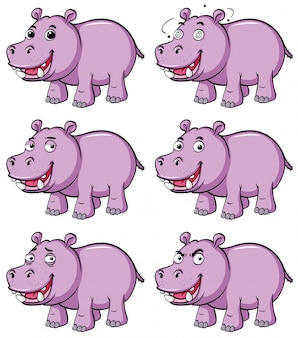 Hippo in six different emotions