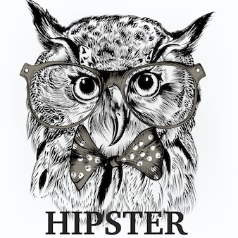 Hispter owl background