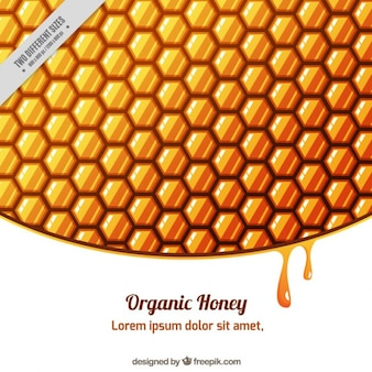 Honeycomb background with drops