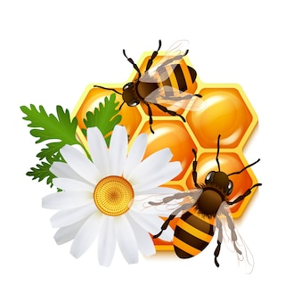 ハチの蜂の花のエンブレム