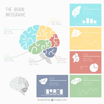 Human brain infographic with several charts