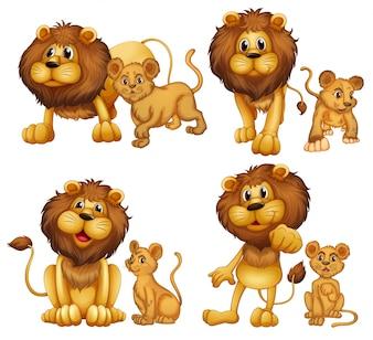 Illustration of a set of lions