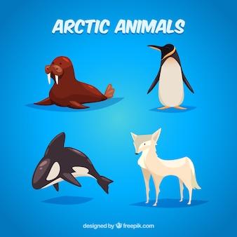 Illustration of arctic animals