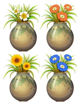 Illustration of four potted plant and flowers