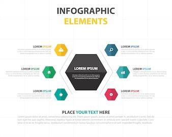 Infographics with hexagonal options