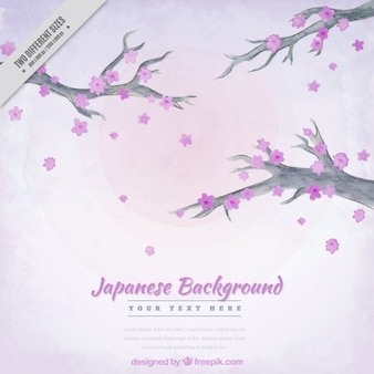 Japanese background with cherry blossom in watercolor effect