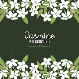 Jasmine frame background