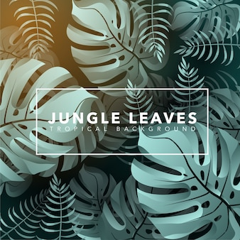 Jungle leaves background