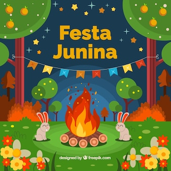 Junina festival background of bonfire in the forest