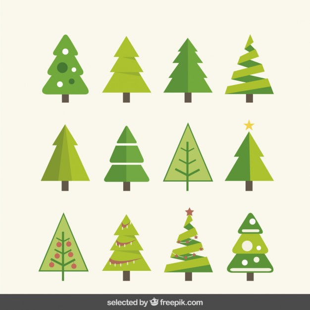 Kinds of fir tree collection
