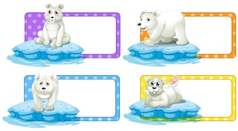 Lable design with polar bears illustration