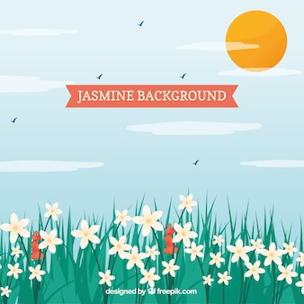 Landscape background with pretty jasmine