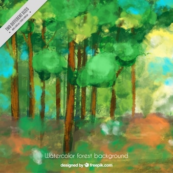 Landscape of green trees painted with watercolors