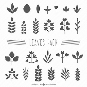 Leaf silhouette collection