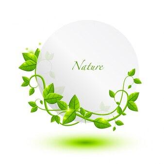 Leaf template design