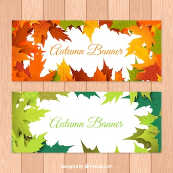 Leaves autumn banners