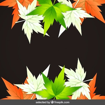Leaves with India flag colors