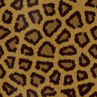 Leopard hair texture