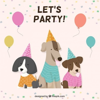 Let's dog party!
