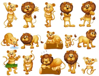 Lion and lioness in different actions illustration