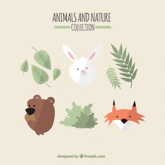 Lovely animals and nature collection