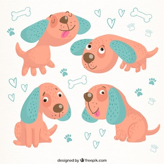 Lovely dog in four postures