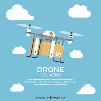 Lovely drone delivering a box