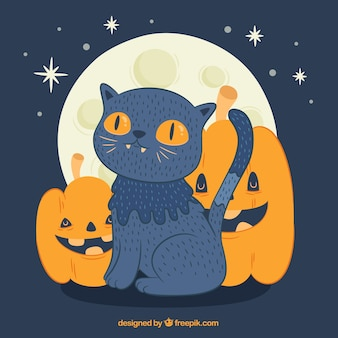 Lovely halloween cat with pumpkins