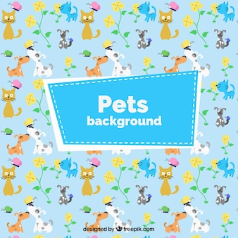 Lovely pets coloured background