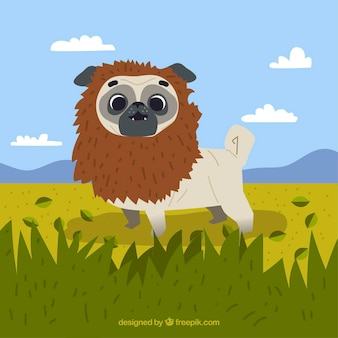 Lovely pug with lion costume