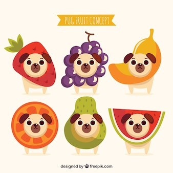 Lovely pugs and fruit