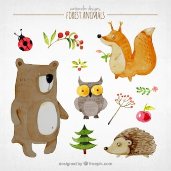 Lovely story animals set
